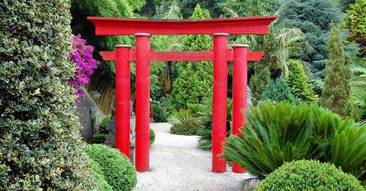 Natuurconcerten hans kerkhoff for Zen tuin aanleggen
